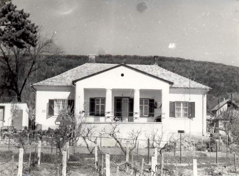 Buday Villa | Csopak